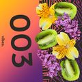 Kiwi vibes #003