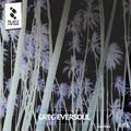 Greg Eversoul - Platz Für Tanz Podcast MARCH 2016
