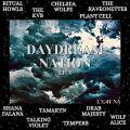 Daydream Nation 01