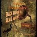 Mo'Jazz 193: Ethio Frequencies