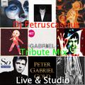 Music for My Friends : Peter Gabriel Tribute Mix - Live & Studio
