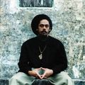 Damian Marley - Rare Joints ( wicked complication)