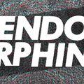 Rhyleb at Endorphin Festival 23.07.2016(live recording)