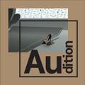 Au_dition 11/20