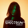 Joris Voorn Presents: Spectrum Radio 217