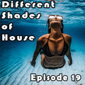 Different Shades of House 20 [Melodic Techno]