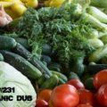 TDZ#231... Organic Dub.....