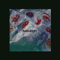 BLACK QUARTZ MIXTAPE #021 by Saeko Killy