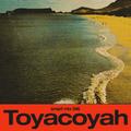 Smart Mix 46: Toyacoyah