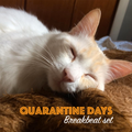 Quarantine Days - Breakbeat Set