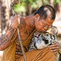 SonGoa - Tiger Mantras