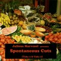 (EGAMIMIX002) V.A. - Julious Marvesol presents… - Spontaneous Cuts, Take1 - 2010