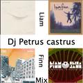 Music for My Friends : Liam Finn Mix