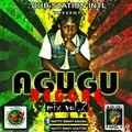 Agugu Reggae Mix Vol 2