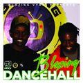 BLAZING VYBZ DANCEHALL - DJ LYNKKY X     STAMINATOR     7-5-21