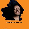 Kerri Chandler - Back To The Raw Radio Show #21