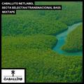 Secta Selectah - Transnacional Bass Vol1