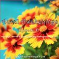 Aural Awakenings: Episode 47 (new age, world & contemporary instrumental music)