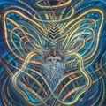 Neo Goa Trance Vol.8 - mixed by Ashipu