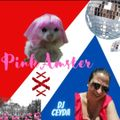Pink Amster #5 Women's Month Tribute