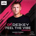 Deekey - Feel The Vibe 047 [Record VIP House] (15.02.2018)