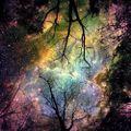 Aldwyn - Cosmic Tribalism