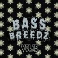 Bass Breedz Vol.19 (Liquid Freeze)