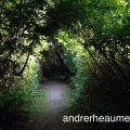 Andre Rheaume Cloudcast #10