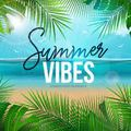 Summer Party - The best of Dance Vibes (July 2021)