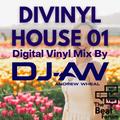 Divinyl House 01