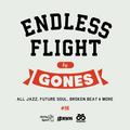 ENDLESS FLIGHT #16 (Sept. '21)