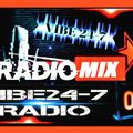 LABOR DAY MIXDOWN 9/6/21 DEEP HOUSE SOULFUL HOUSE    Vibe24-7.com DJ MIXXSIRE