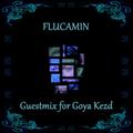 Flucamin Live!
