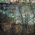 fall silhouettes