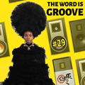 THE WORD IS GROOVE #29 (Radio RapTZ) (CUT)
