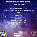 THE WORKS EXPERIENCE DISCOVERY MIX BY SATOSHI, TECH HOUSE