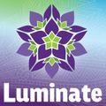 Luminate Festival 2019 Synergy Yoga Mix