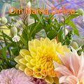 Om Nama Delica (blended by Om Aloha)