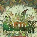 D-sens @ Earth Frequency Festival 2013