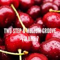 2 Step Mix - Volume 7