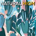NATURAL HIGH! Nu Jazz, Beats, and Jazzy House!