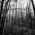 BlackBeats Podcast | 004 | Vegim