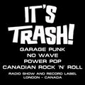 It's Trash! #162 Interview with Sean Wood of The Spits Basement Show #15