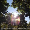 DJ Olly - Liveset Closing @ Sparkling Vibes Festival 2019