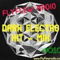 "DARK ELECTRO HIT-MIX #010  -  (with DJ Joachim ""THE NIGHTFLY"")"