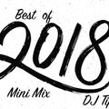 Best of 2018 Mini Mix
