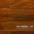 Ian Campbell: DJ Mix 015 - Funky/Jazz House