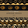 Doc Idaho - African Voices Part II