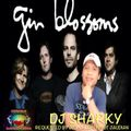 Best of Gin Blossoms