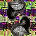Bibi Seck @ Switch - Studio Brussel 24.01.20
